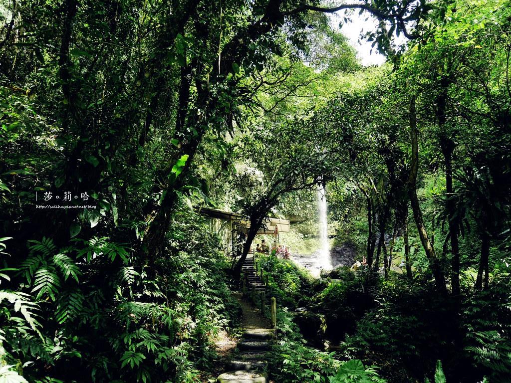 台北新北旅遊親子景點私房秘境夏天免費玩水瀑布踏青登山砲仔崙四龍瀑布 (1)