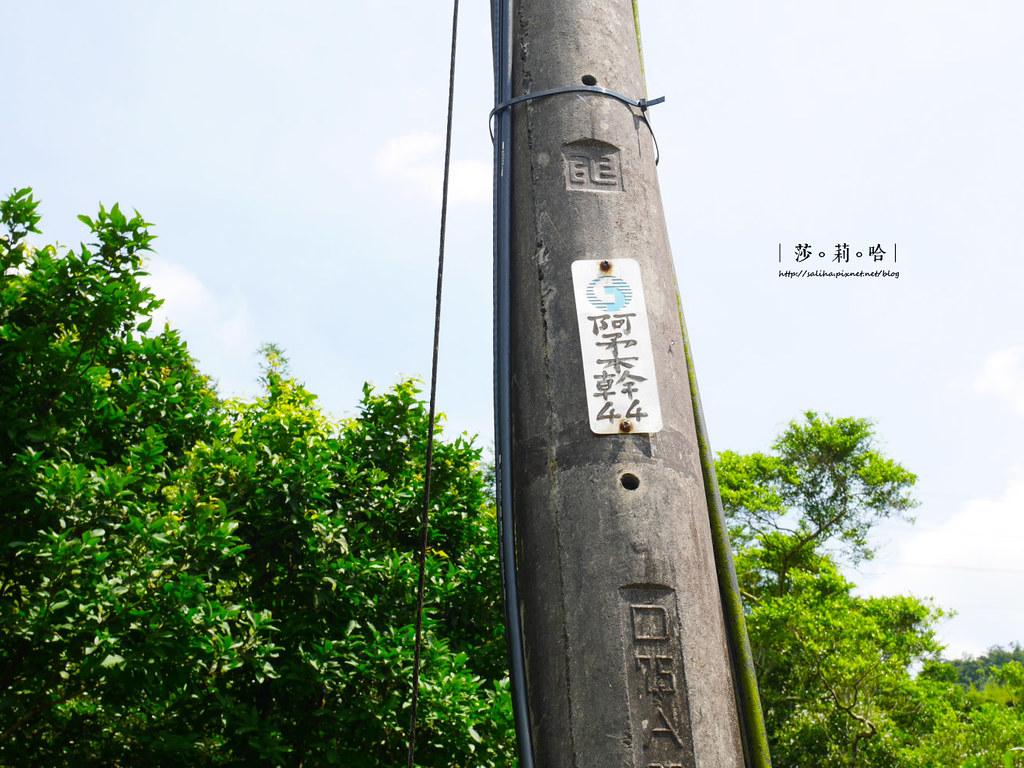 深坑一日遊景點推薦四龍瀑布泡仔崙瀑布怎麼去交通公車 (1)