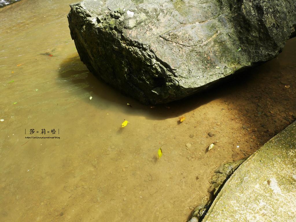 台北新北旅遊親子景點私房秘境夏天免費玩水瀑布踏青登山砲仔崙四龍瀑布 (5)