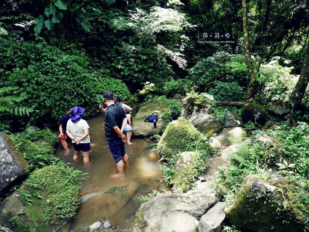 台北新北旅遊親子景點私房秘境夏天免費玩水瀑布踏青登山砲仔崙四龍瀑布 (3)