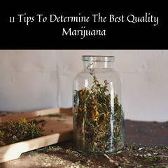 11 Tips To Determine Best Quality Weed
