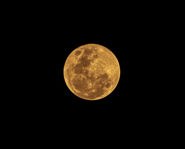 Luna amarilla