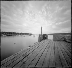 commercial wharf, harbor, sky, Monhegan Boat Line, Port Clyde, Maine, Nikon D3300, 6x6 Pinhole, Ilford FP4+, 7.16.19 jpg