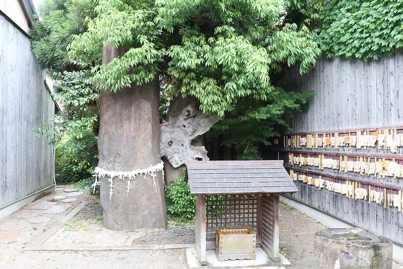 29-23-4W2A5231mh妖怪神社