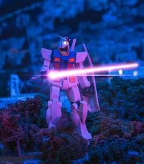 Gundam Night