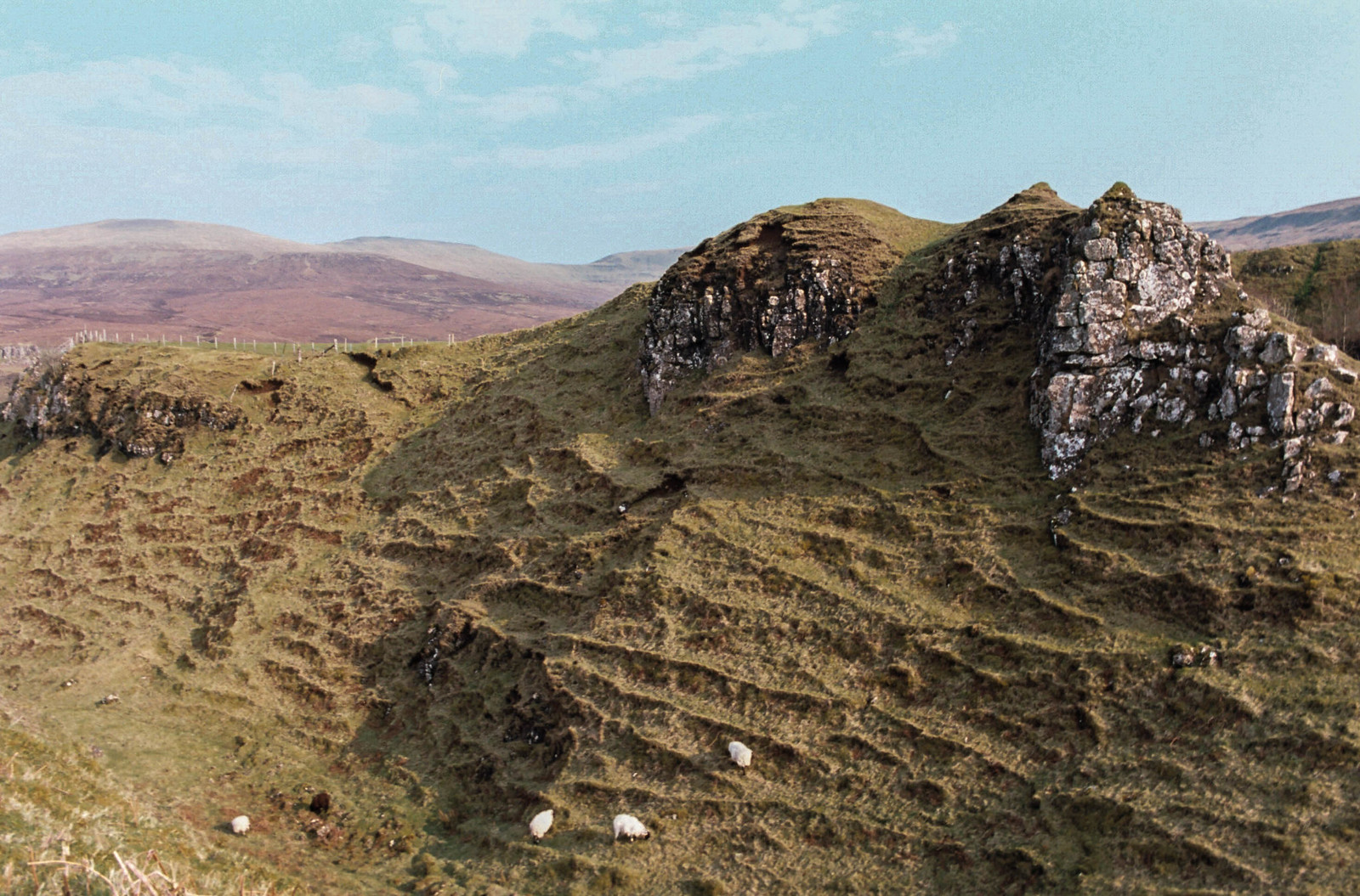 Sheep at the Fairy Glen (Isle of Skye) taken on 35mm Kodak Etkar film.