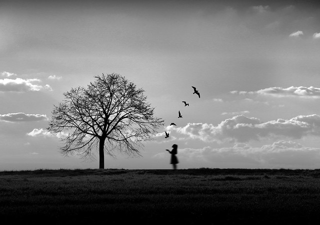 On the wings of time, sadness flies away.