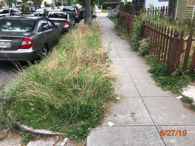 best foreclosure home grass cuts pasadena ca