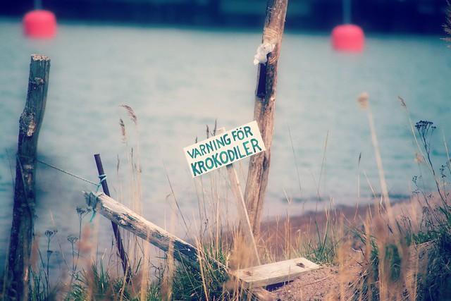Warning for Crocodiles