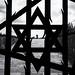 Jewish Memorial, Dachau