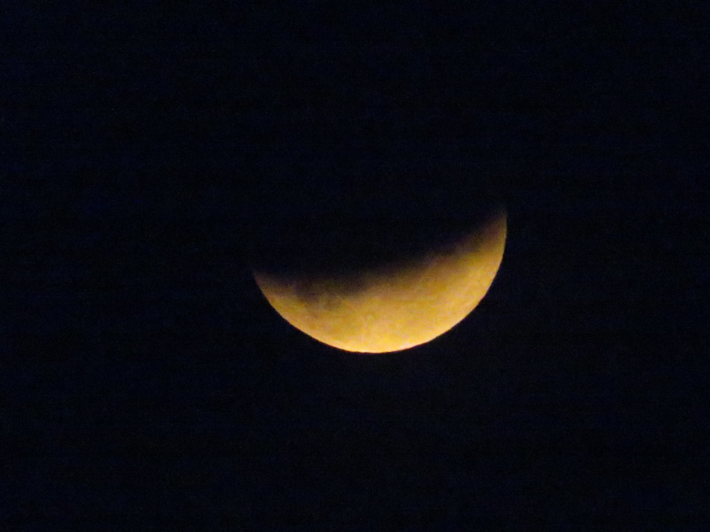 Last nights partial eclipse