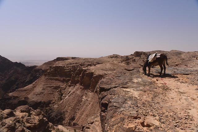 Petra, Jordan, June 2019 014