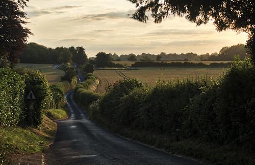 Hampshire Lane, Winchester