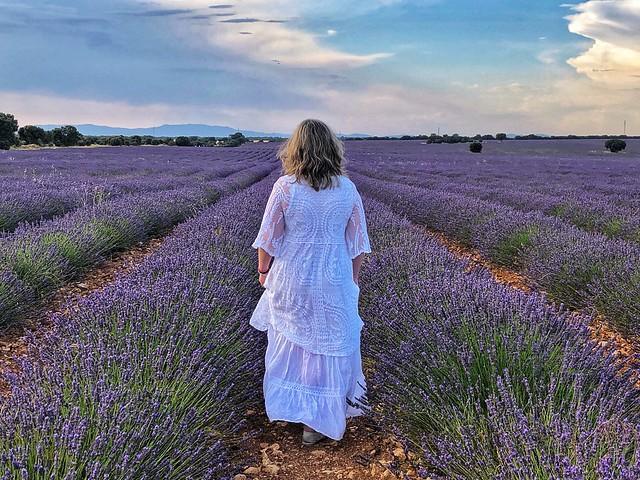 Rebeca paseando por los campos de lavanda de Brihuega