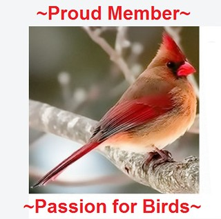 Proud Members Passion for Birds