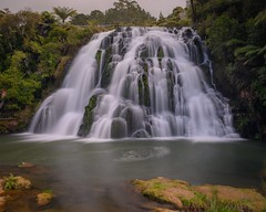 Owhoroa Falls | New Zealand
