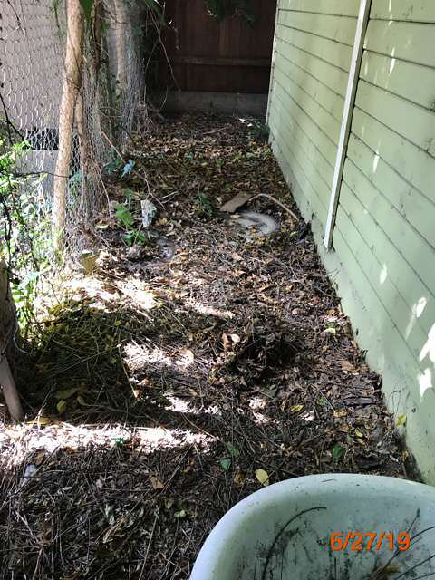 property preservation foreclosed property grass cuts pasadena ca
