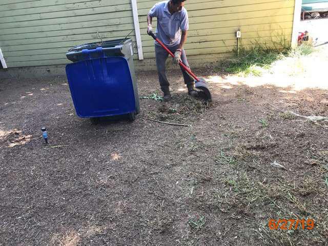 property preservation grass cut pasadena ca