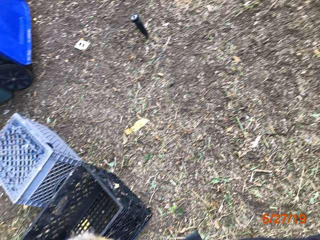 reo property maintenance grass cuts pasadena ca