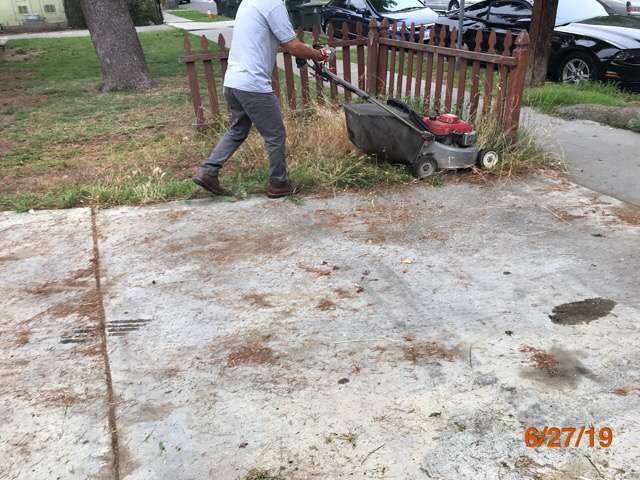 commercial grass cuts pasadena ca