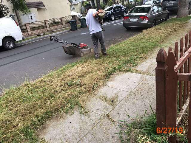 overgrown grass cuts bank owned properties pasadena ca