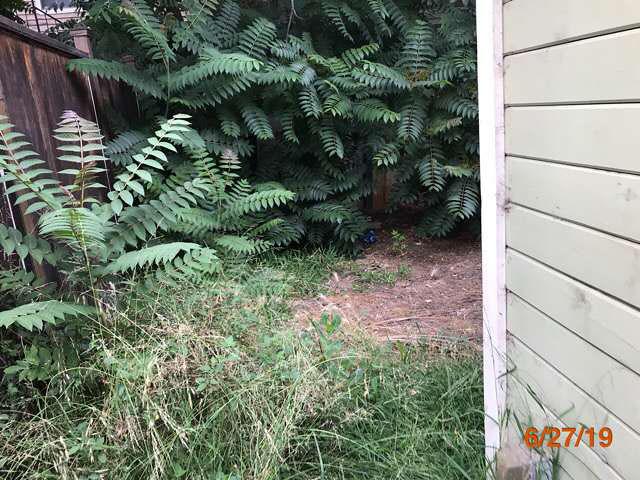lawn care properties pasadena ca