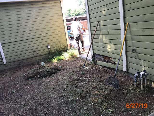 property preservation bank owned grass cuts pasadena ca