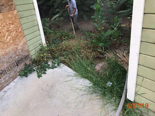 grass cutting real estate owned properties pasadena ca