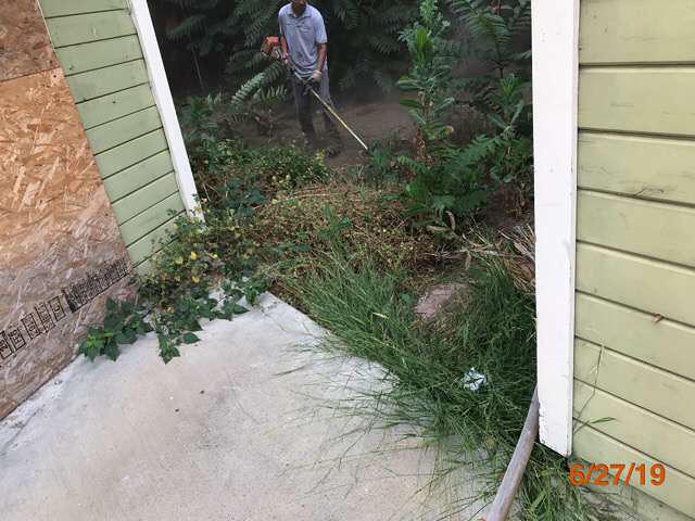 code violation reo property grass cuts pasadena ca