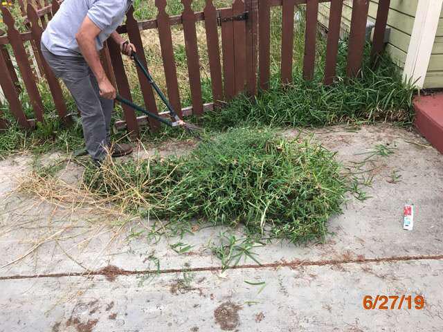 landscaping foreclosures pasadena ca