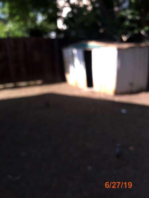 vacant foreclosed home grass cuts pasadena ca