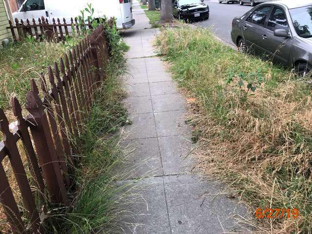 grass cuts property preservation pasadena ca