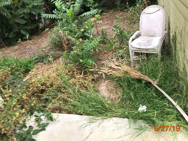 lawn care abandoned homes pasadena ca