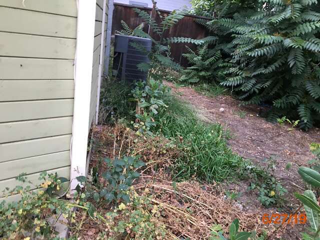 overgrown grass cuts reo properties pasadena ca