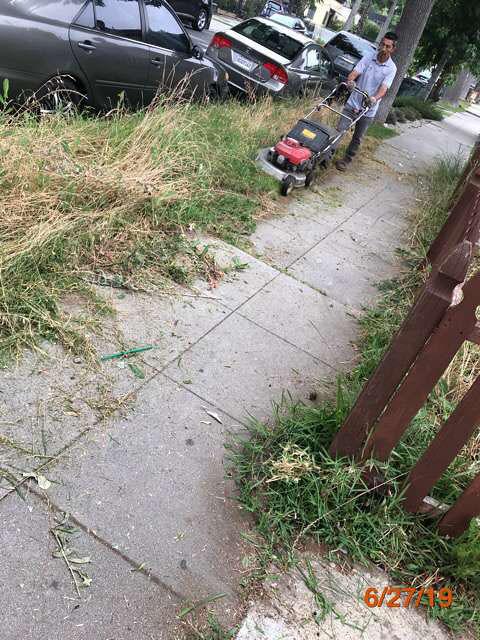 vacant home grass cuts pasadena ca