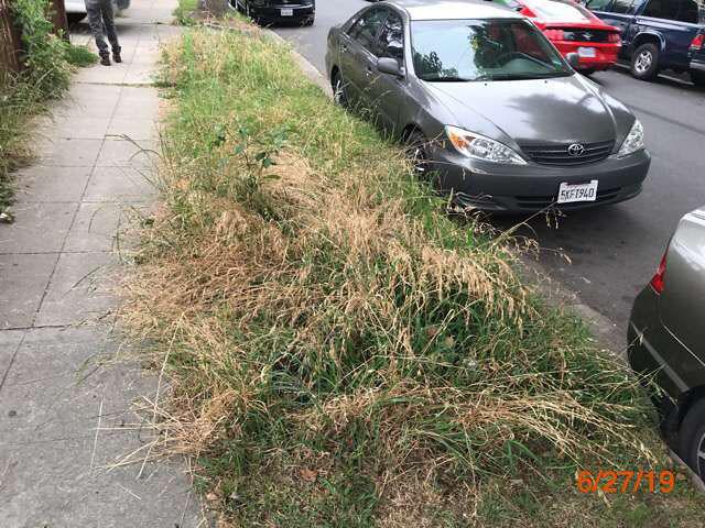 grass cutting service real estate owned properties pasadena ca