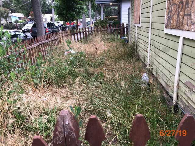 best lawn maintenance reo services pasadena ca