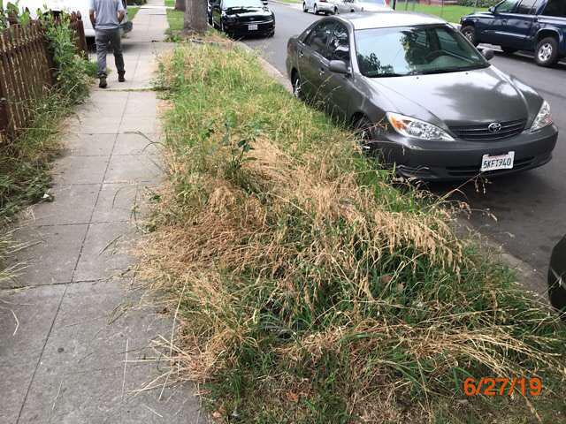 property preservation grass cuts pasadena ca