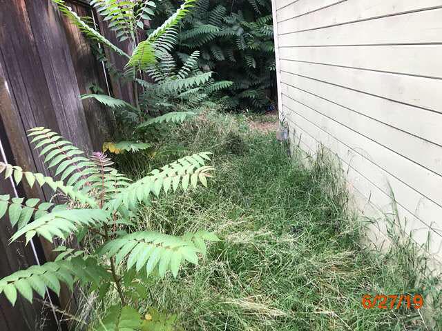 foreclosed homes grass cuts pasadena ca