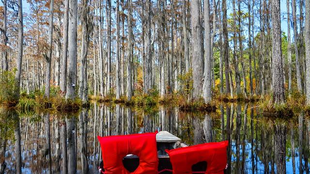 South Carolina, 2011-002.jpg