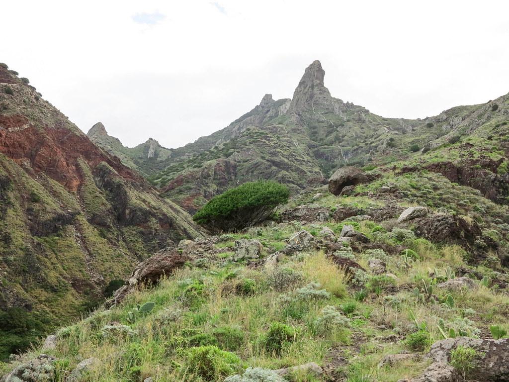Paisajes desde Afur a Taganana