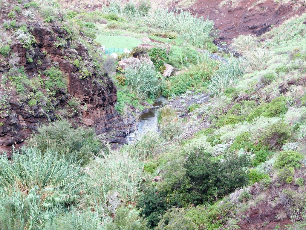 Caminar en Tenerife