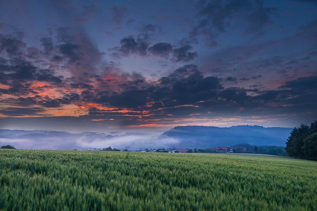 Morgenstimmung Sauerland