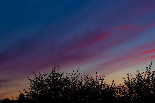 Beautiful sunset ..