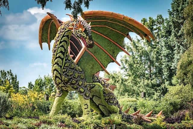 ATL Botanical Gardens Dragon (3803)
