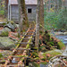 Alfred Regan Mill, GSMNP