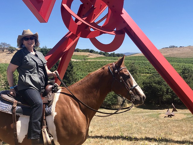 Nancy Brown, Sonoma Trail Rides, di Rosa Center for Contemporary Art