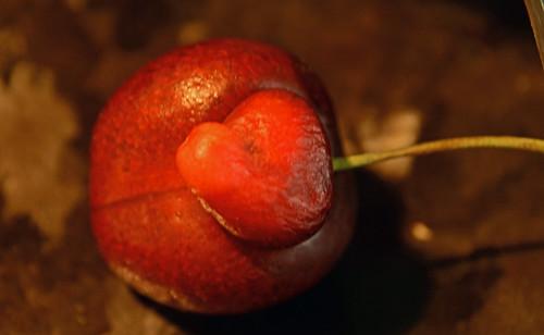 heart of a cherry .. le coeur d'une cerise