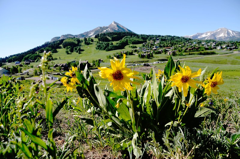 Teddy's Trail, Crested Butte (47)