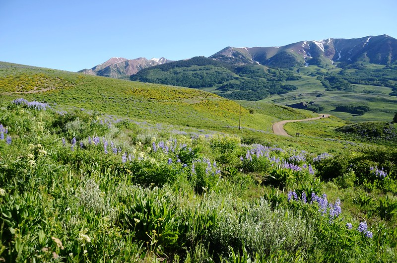 Teddy's Trail, Crested Butte (24)